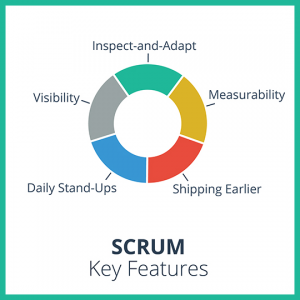 will scrum work for you